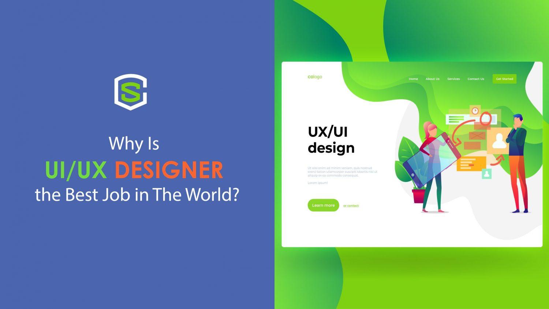 UIUX designer the best job in the world